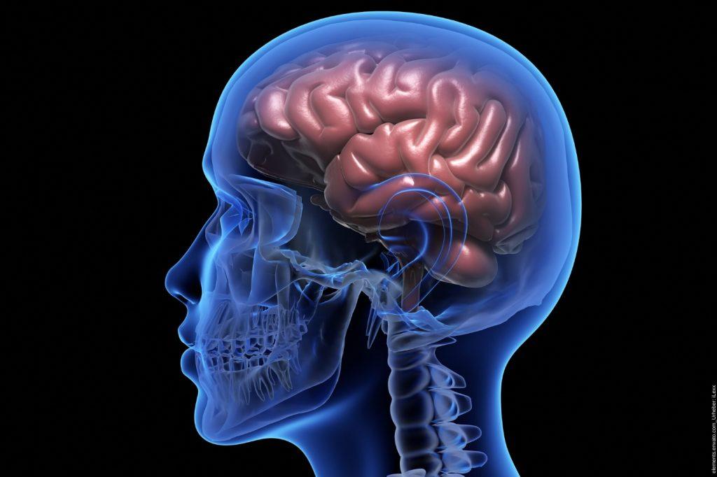 Erfahre hier warum man Dinge vergisst und wie Gehirnjogging Übungen dabei kostenlos helfen kann.