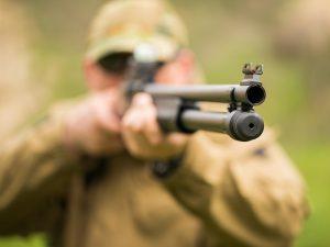 jagd in deutschland- sicheres jagen